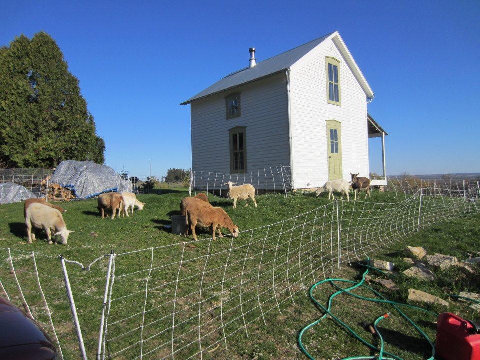 Mały dom, Iowa