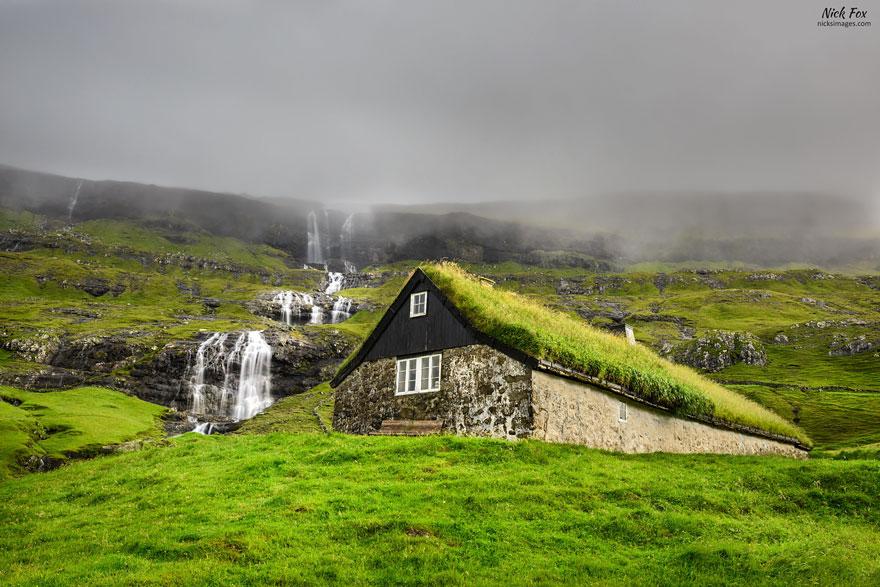 Zielony dach, budowa domu