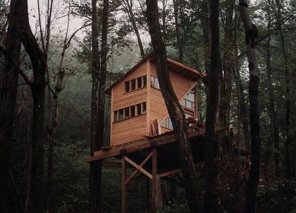 Mały dom w lesie