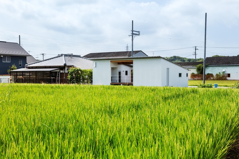 Dom do 100m2, Japonia