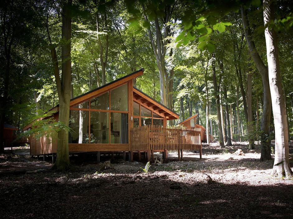 Mały domek w lesie