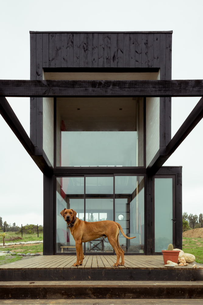 Wysoki domek do 35m2, Chile, domek z antresolą